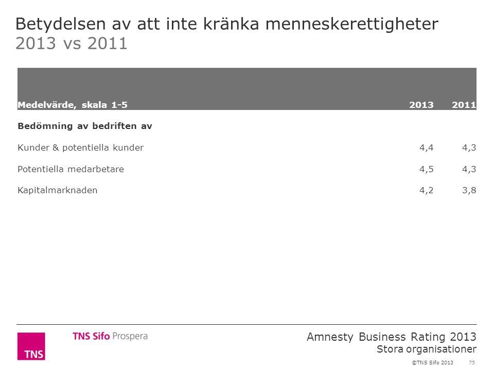 75 Amnesty Business Rating 2013 Stora organisationer ©TNS Sifo 2013 Betydelsen av att inte kränka menneskerettigheter 2013 vs 2011 Medelvärde, skala 1-52013 2011 Bedömning av bedriften av Kunder & potentiella kunder 4,44,3 Potentiella medarbetare 4,54,3 Kapitalmarknaden 4,23,8