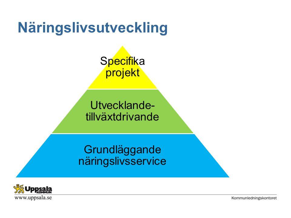 Näringslivsutveckling Specifika projekt Utvecklande- tillväxtdrivande Grundläggande näringslivsservice