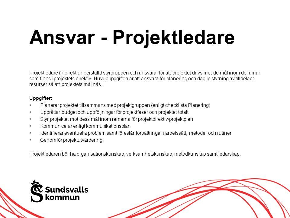 Allt innehåll innanför ramen Ansvar - Projektledare Projektledare är direkt underställd styrgruppen och ansvarar för att projektet drivs mot de mål inom de ramar som finns i projektets direktiv.