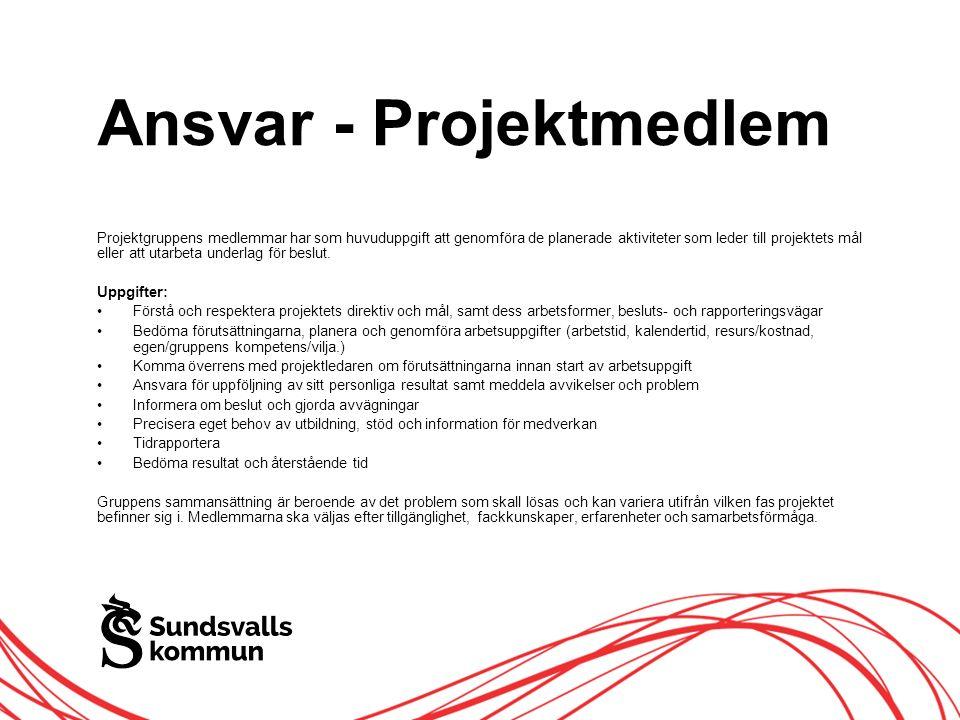 Allt innehåll innanför ramen Ansvar - Projektmedlem Projektgruppens medlemmar har som huvuduppgift att genomföra de planerade aktiviteter som leder till projektets mål eller att utarbeta underlag för beslut.