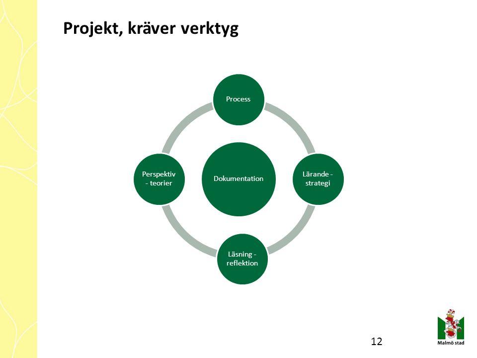 Dokumentation Process Lärande - strategi Läsning - reflektion Perspektiv - teorier Projekt, kräver verktyg 12
