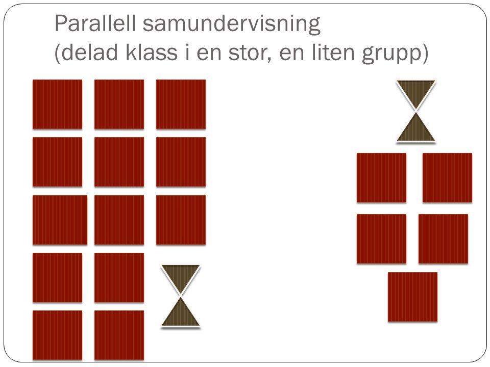 Parallell samundervisning (delad klass i en stor, en liten grupp)