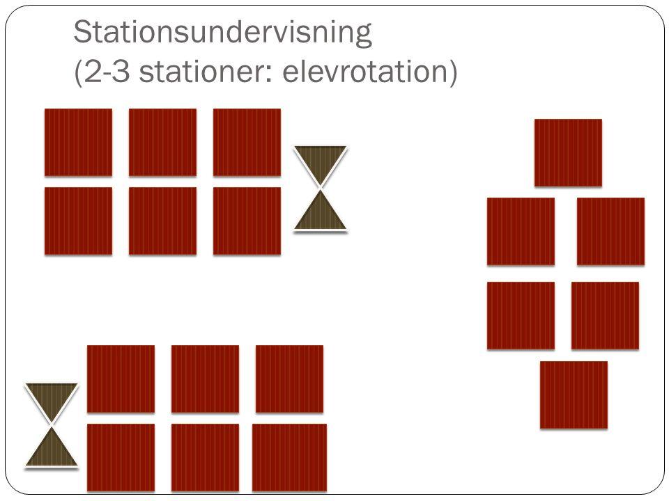 Stationsundervisning (2-3 stationer: elevrotation)