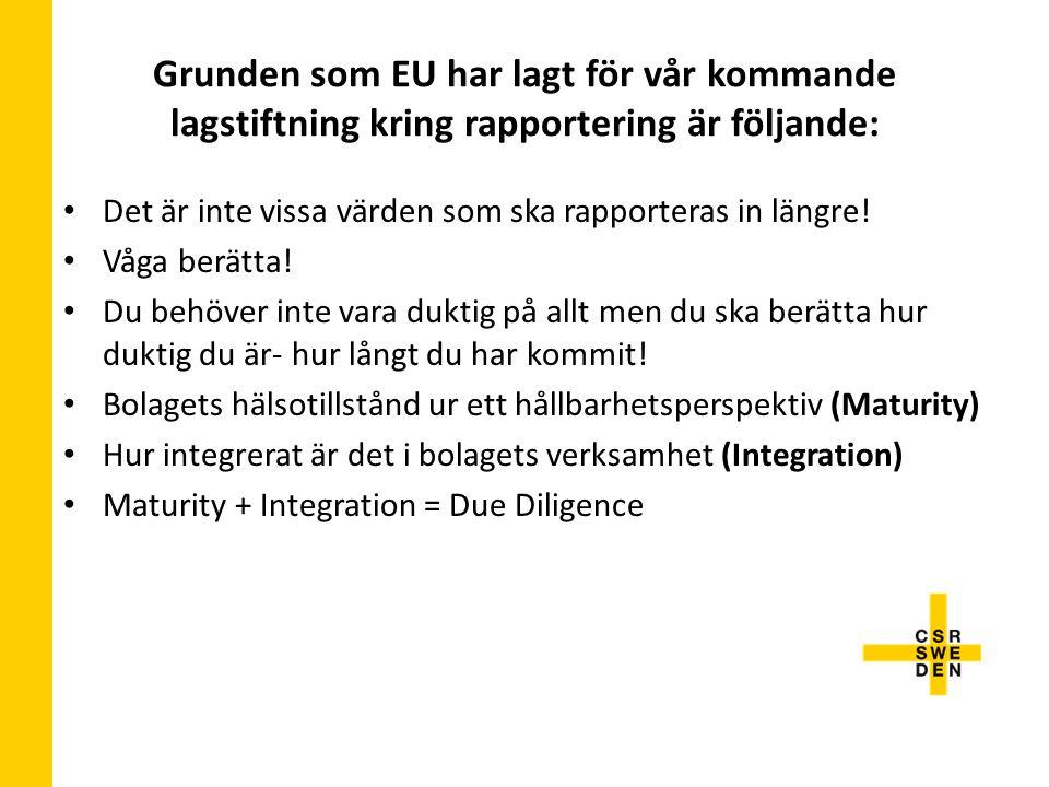 Grunden som EU har lagt för vår kommande lagstiftning kring rapportering är följande: Det är inte vissa värden som ska rapporteras in längre.