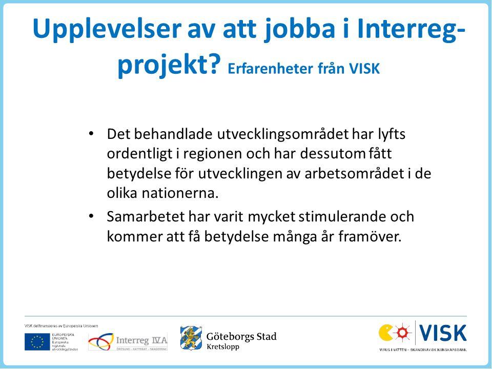 Upplevelser av att jobba i Interreg- projekt.