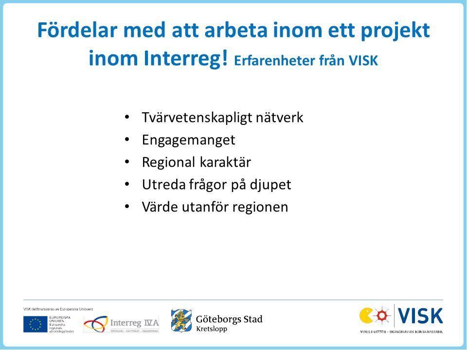 Fördelar med att arbeta inom ett projekt inom Interreg.