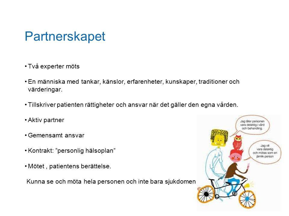 Partnerskapet Två experter möts En människa med tankar, känslor, erfarenheter, kunskaper, traditioner och värderingar.