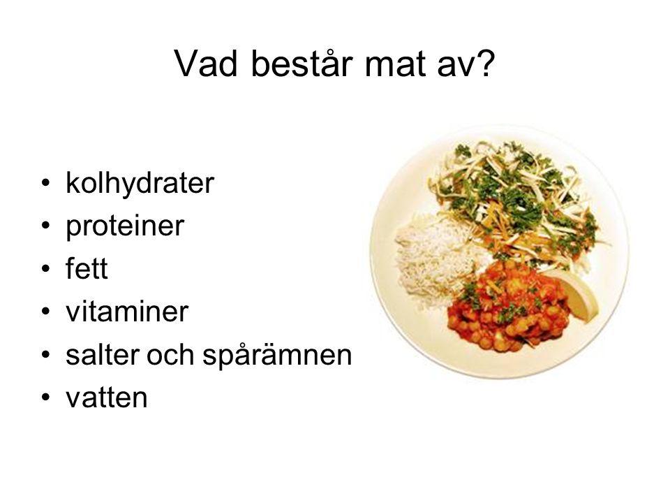 Vad består mat av? kolhydrater proteiner fett vitaminer salter och spårämnen vatten