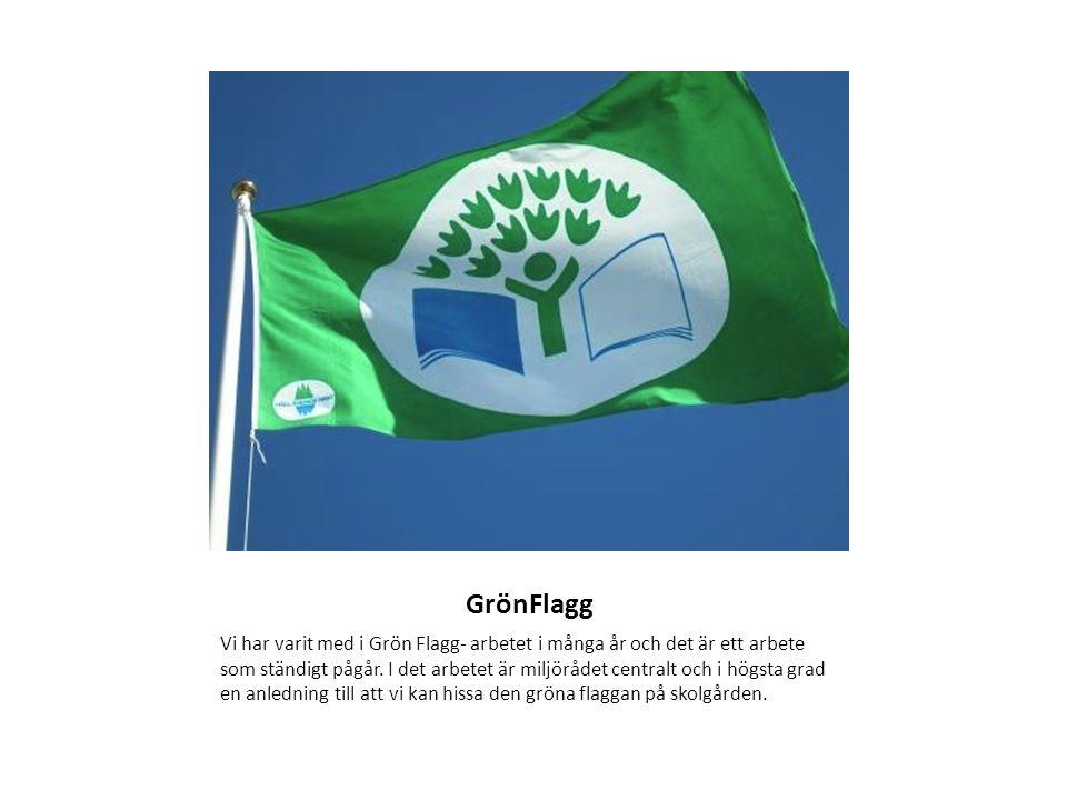 GrönFlagg Vi har varit med i Grön Flagg- arbetet i många år och det är ett arbete som ständigt pågår.