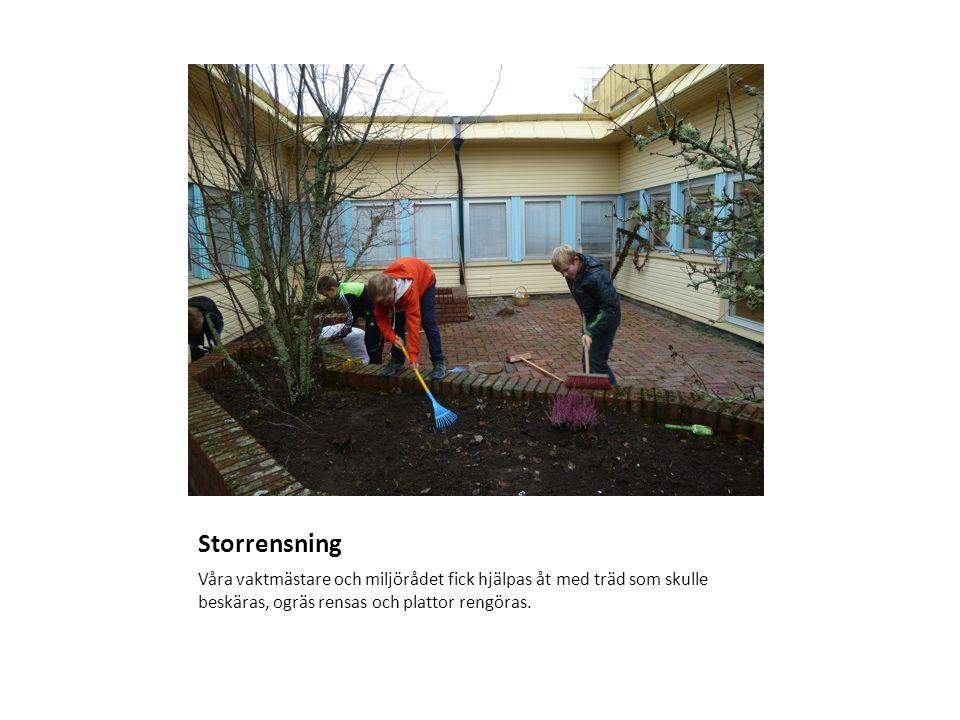 Storrensning Våra vaktmästare och miljörådet fick hjälpas åt med träd som skulle beskäras, ogräs rensas och plattor rengöras.