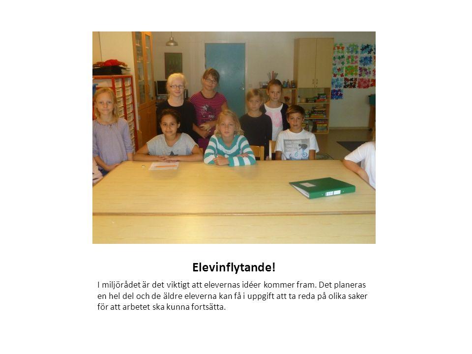 Elevinflytande. I miljörådet är det viktigt att elevernas idéer kommer fram.