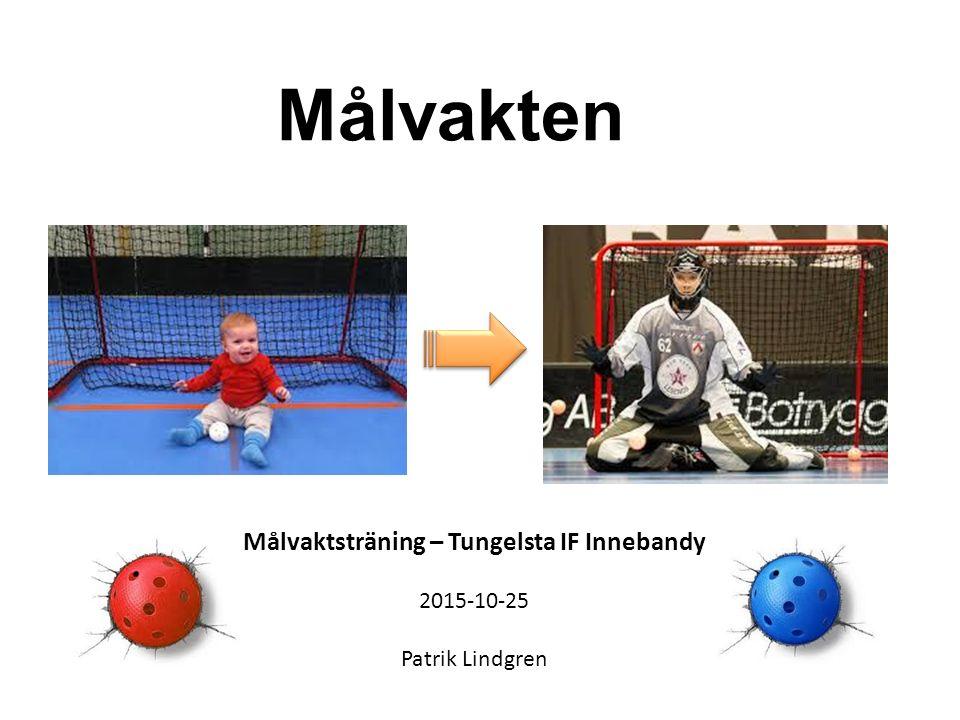Målvakten Målvaktsträning – Tungelsta IF Innebandy 2015-10-25 Patrik Lindgren