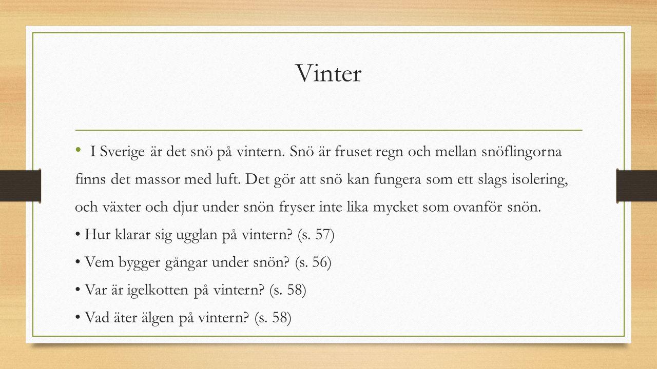 Vinter I Sverige är det snö på vintern. Snö är fruset regn och mellan snöflingorna finns det massor med luft. Det gör att snö kan fungera som ett slag