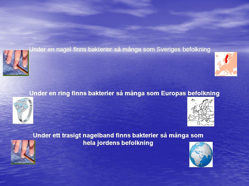 Under en nagel finns bakterier så många som Sveriges befolkning Under en ring finns bakterier så många som Europas befolkning Under ett trasigt nagelb
