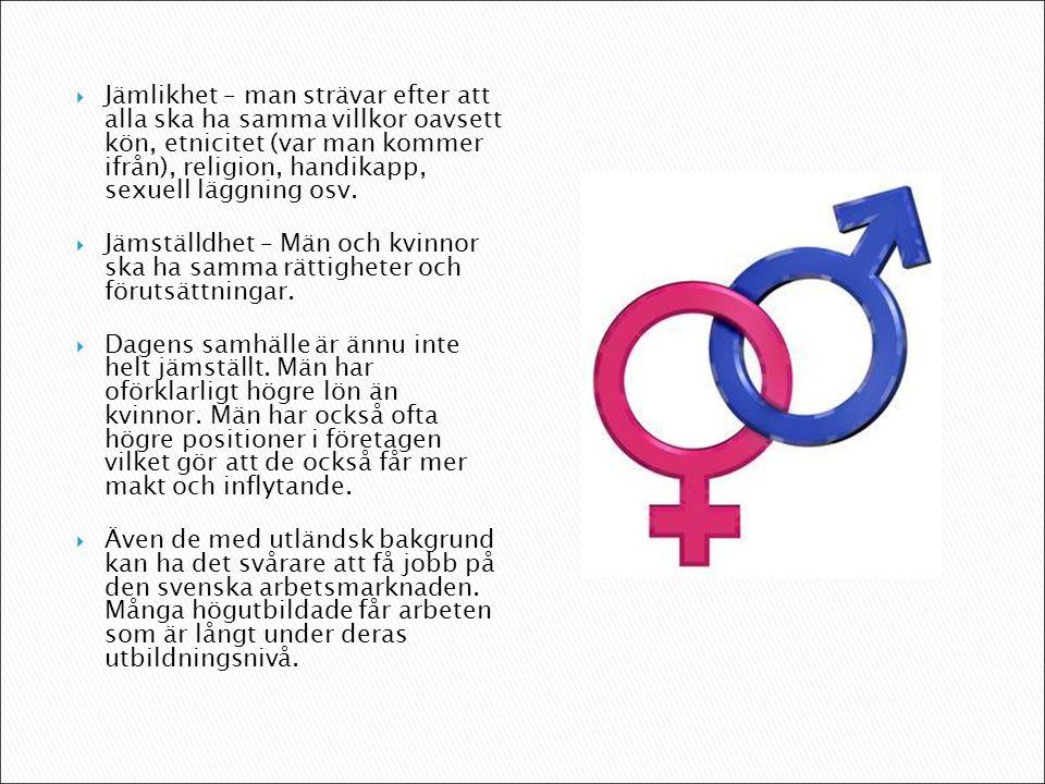  Jämlikhet – man strävar efter att alla ska ha samma villkor oavsett kön, etnicitet (var man kommer ifrån), religion, handikapp, sexuell läggning osv.