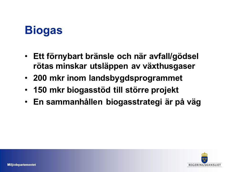 Miljödepartementet Biogas Ett förnybart bränsle och när avfall/gödsel rötas minskar utsläppen av växthusgaser 200 mkr inom landsbygdsprogrammet 150 mkr biogasstöd till större projekt En sammanhållen biogasstrategi är på väg