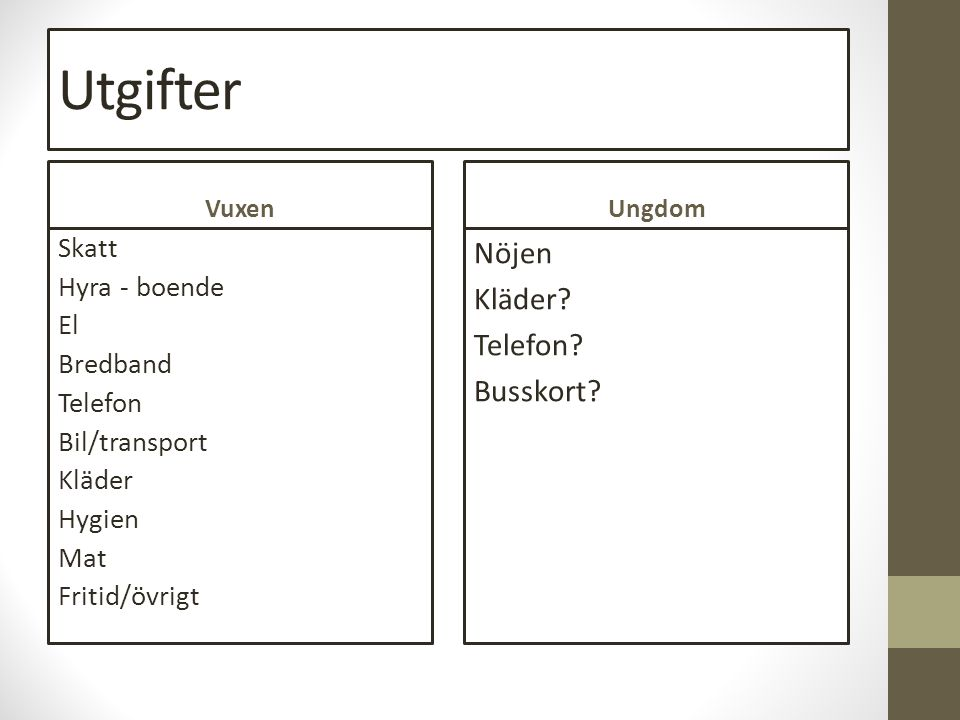Utgifter Vuxen Skatt Hyra - boende El Bredband Telefon Bil/transport Kläder Hygien Mat Fritid/övrigt Ungdom Nöjen Kläder.
