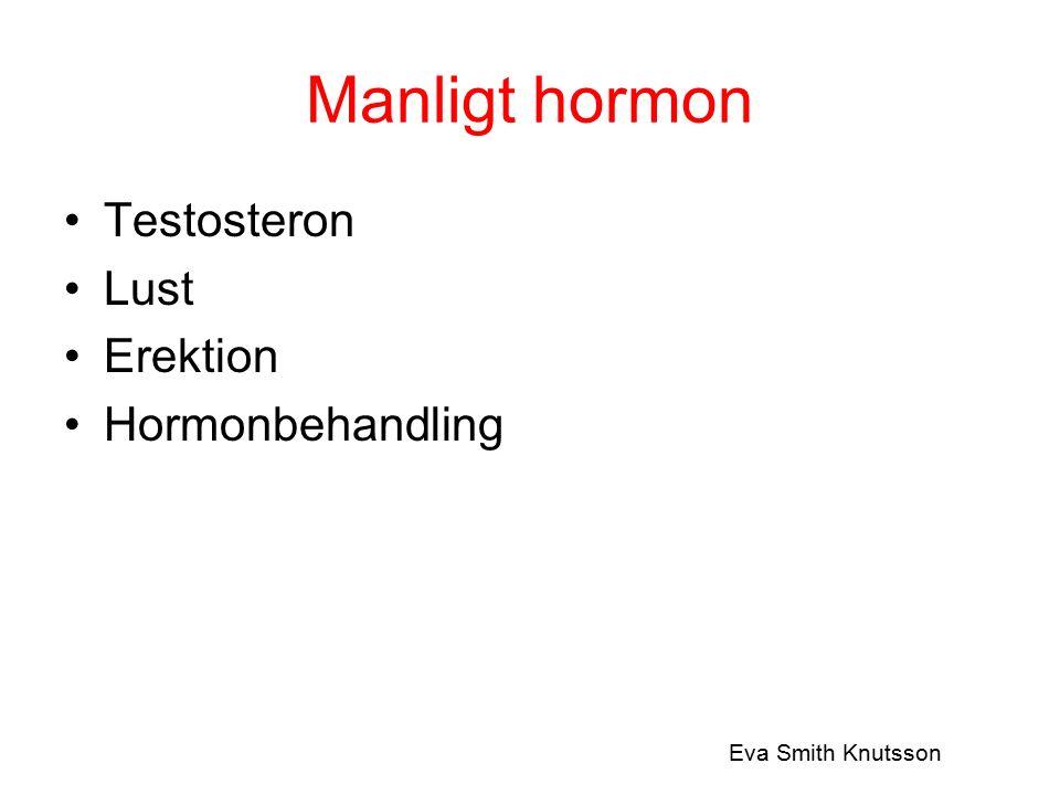 Manligt hormon Testosteron Lust Erektion Hormonbehandling Eva Smith Knutsson