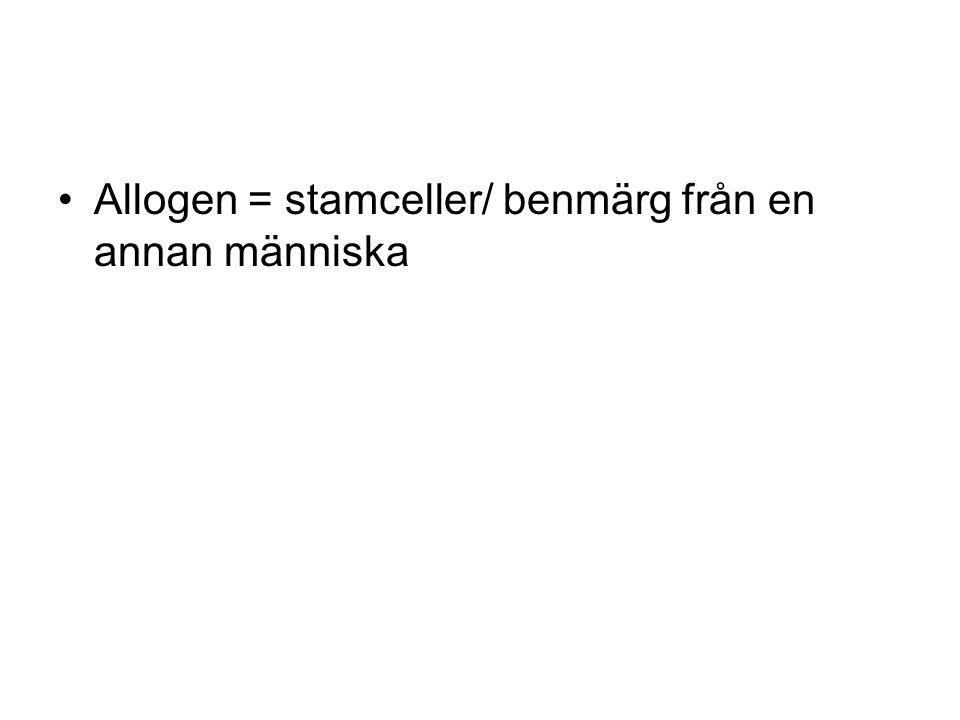 Allogen = stamceller/ benmärg från en annan människa