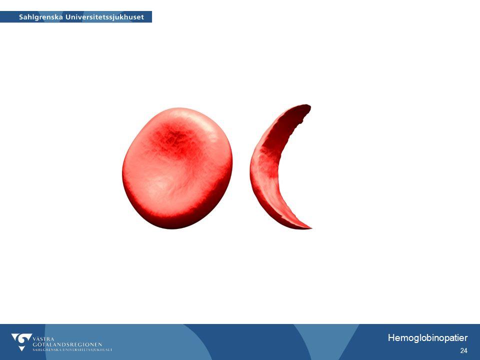 Hemoglobinopatier 24