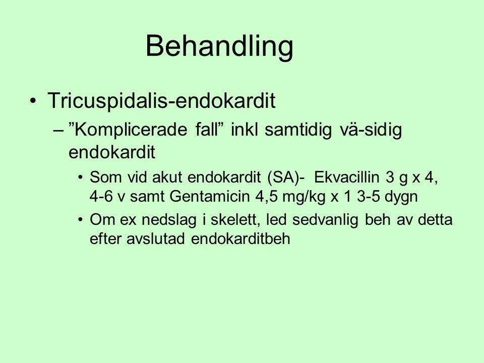 Behandling Tricuspidalis-endokardit – Komplicerade fall inkl samtidig vä-sidig endokardit Som vid akut endokardit (SA)- Ekvacillin 3 g x 4, 4-6 v samt Gentamicin 4,5 mg/kg x 1 3-5 dygn Om ex nedslag i skelett, led sedvanlig beh av detta efter avslutad endokarditbeh