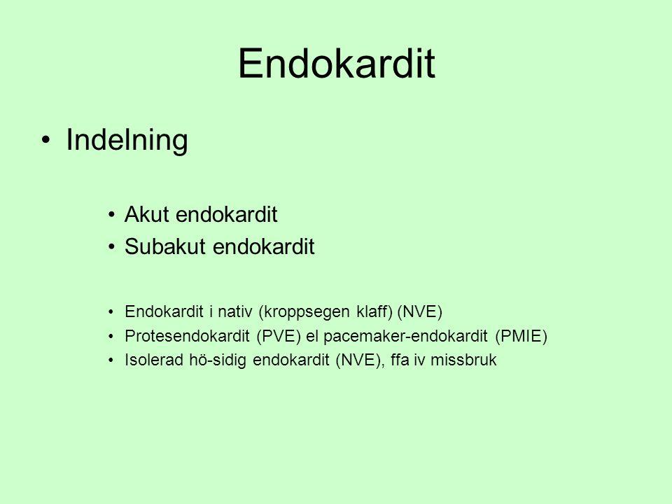 Endokardit Indelning Akut endokardit Subakut endokardit Endokardit i nativ (kroppsegen klaff) (NVE) Protesendokardit (PVE) el pacemaker-endokardit (PMIE) Isolerad hö-sidig endokardit (NVE), ffa iv missbruk