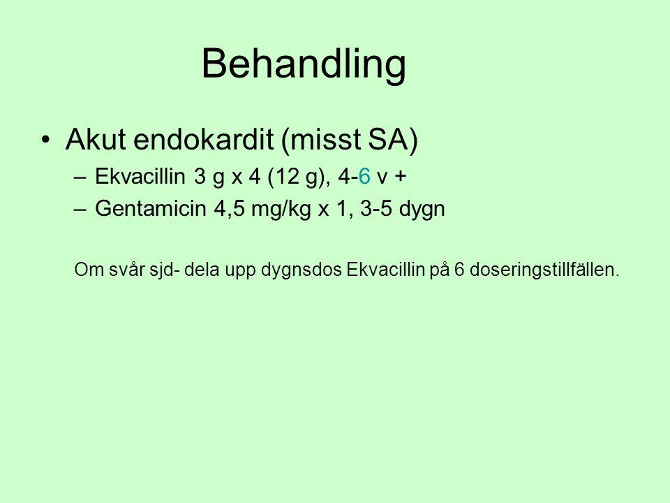 Behandling Akut endokardit (misst SA) –Ekvacillin 3 g x 4 (12 g), 4-6 v + –Gentamicin 4,5 mg/kg x 1, 3-5 dygn Om svår sjd- dela upp dygnsdos Ekvacillin på 6 doseringstillfällen.