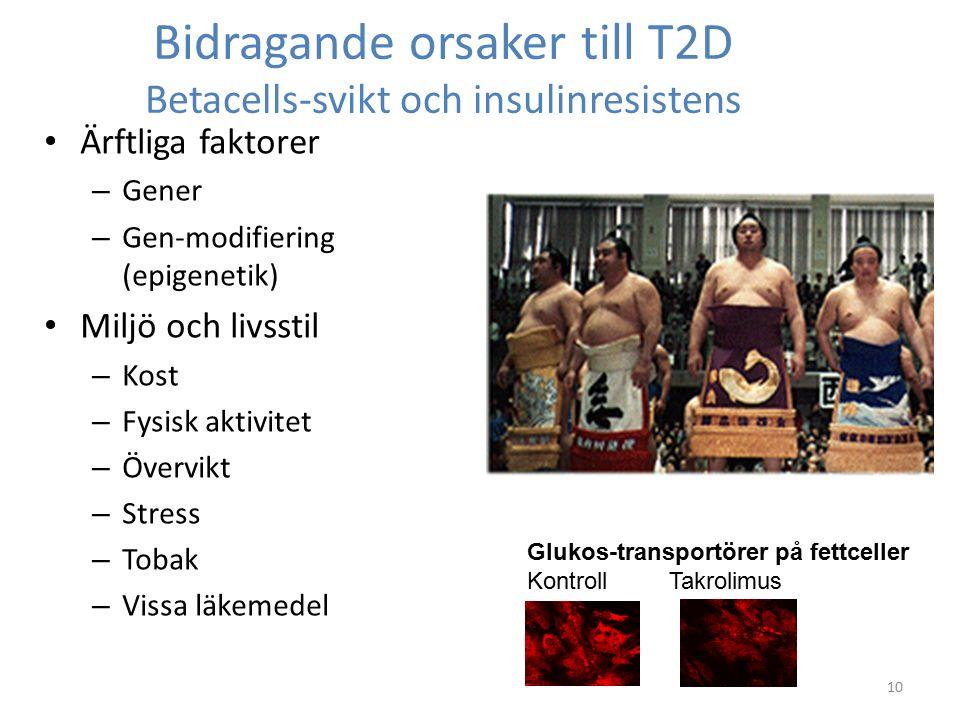 Bidragande orsaker till T2D Betacells-svikt och insulinresistens Ärftliga faktorer – Gener – Gen-modifiering (epigenetik) Miljö och livsstil – Kost – Fysisk aktivitet – Övervikt – Stress – Tobak – Vissa läkemedel 10 Glukos-transportörer på fettceller Kontroll Takrolimus