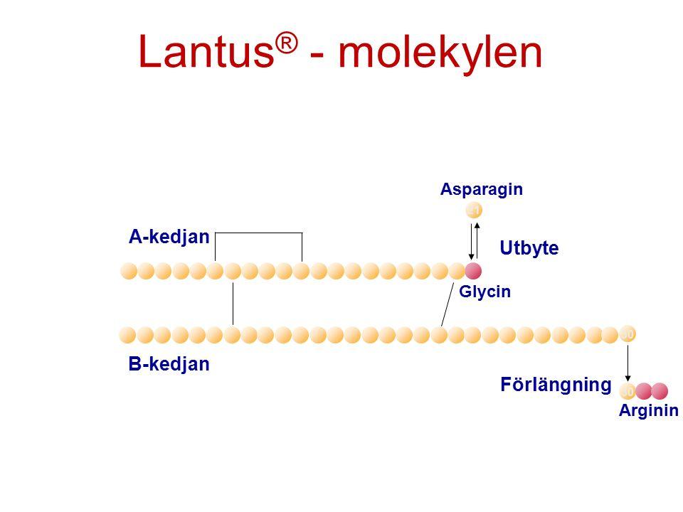 A-kedjan B-kedjan Förlängning Arginin 30 Utbyte Asparagin Glycin 21 Lantus ® - molekylen