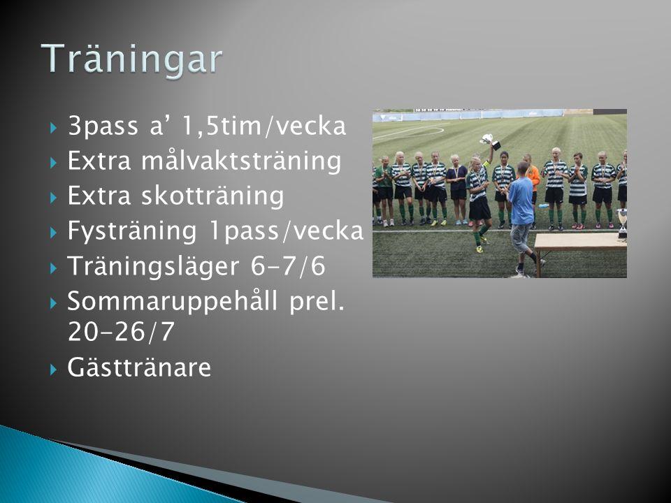  3pass a' 1,5tim/vecka  Extra målvaktsträning  Extra skotträning  Fysträning 1pass/vecka  Träningsläger 6-7/6  Sommaruppehåll prel. 20-26/7  Gä