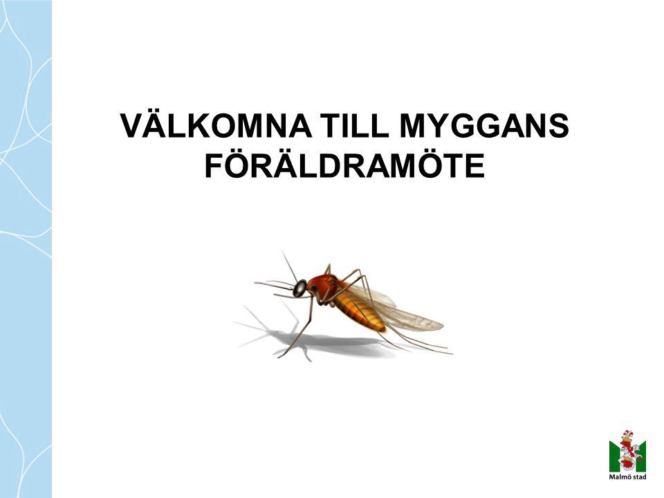 VÄLKOMNA TILL MYGGANS FÖRÄLDRAMÖTE