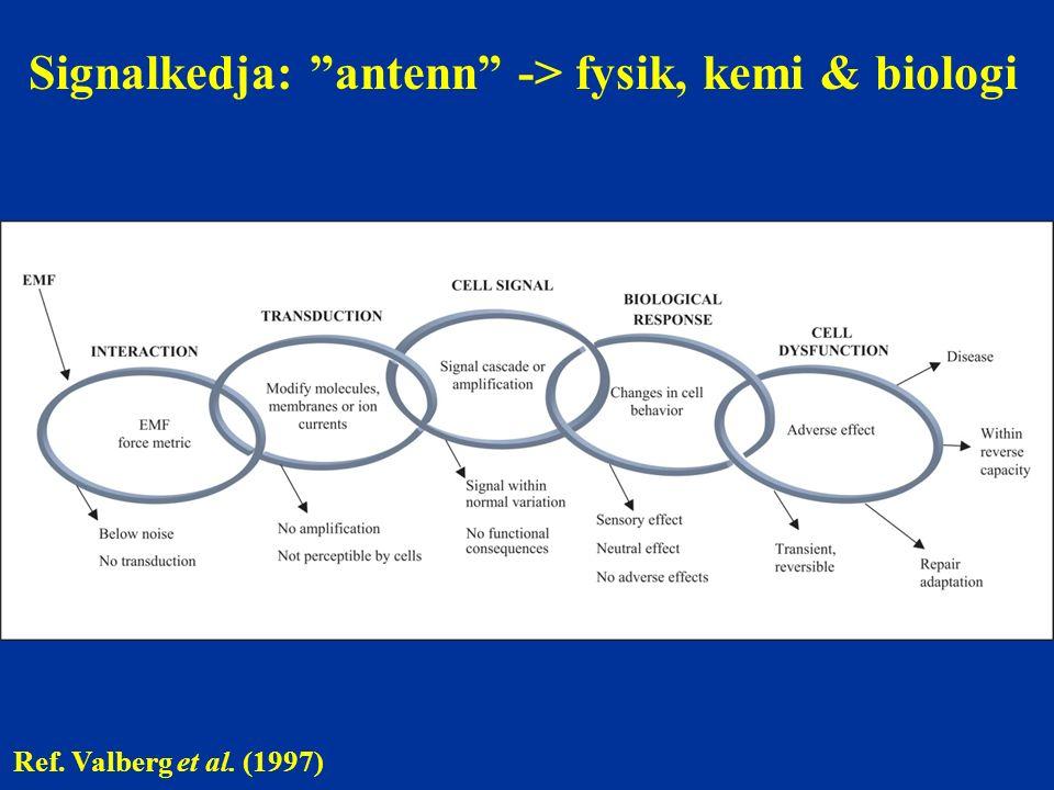 "Signalkedja: ""antenn"" -> fysik, kemi & biologi Ref. Valberg et al. (1997)"