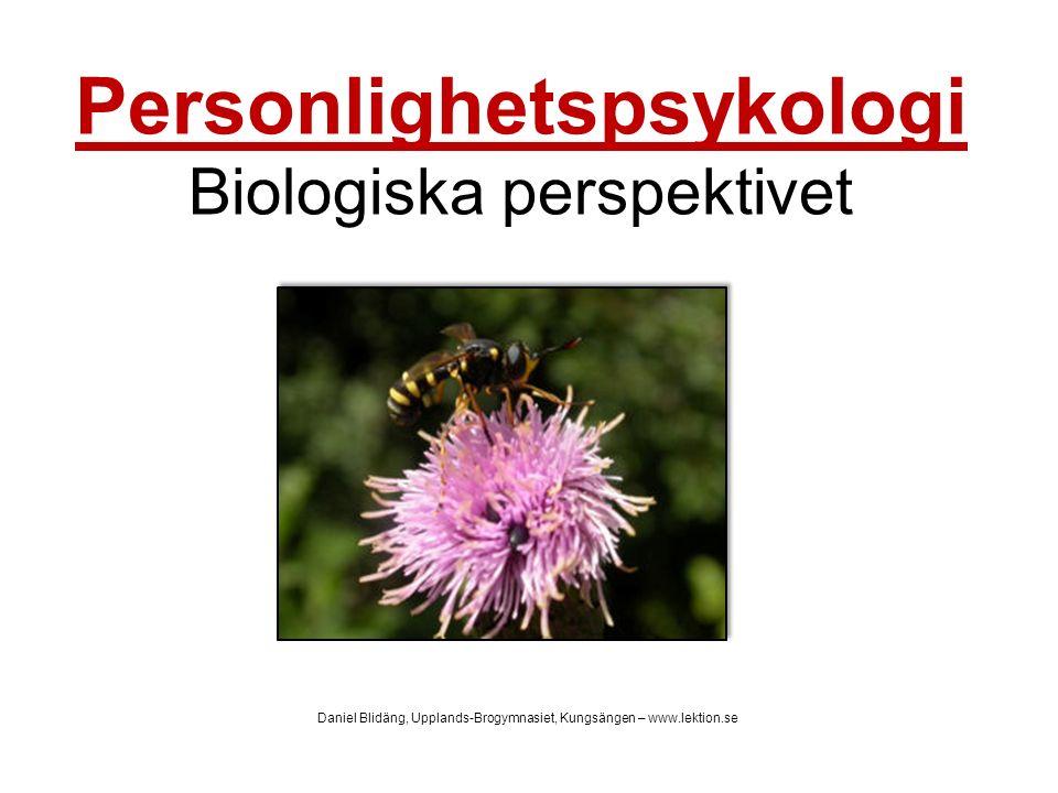 Personlighetspsykologi Biologiska perspektivet Daniel Blidäng, Upplands-Brogymnasiet, Kungsängen – www.lektion.se