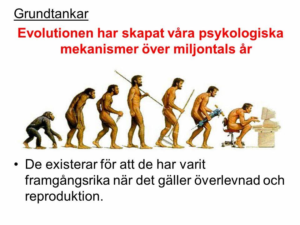 Grundtankar Evolutionen har skapat våra psykologiska mekanismer över miljontals år De existerar för att de har varit framgångsrika när det gäller över