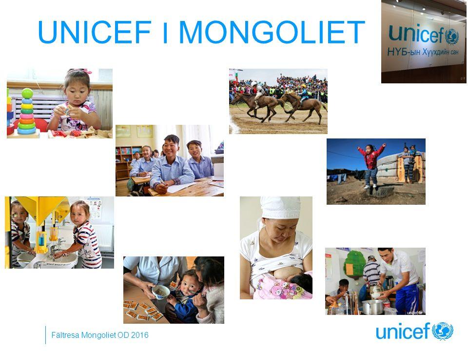 UNICEF I MONGOLIET Fältresa Mongoliet OD 2016