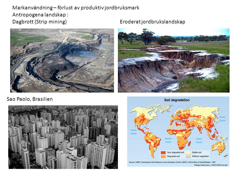 Markanvändning – förlust av produktiv jordbruksmark Antropogena landskap : Dagbrott (Strip mining) Eroderat jordbrukslandskap Sao Paolo, Brasilien
