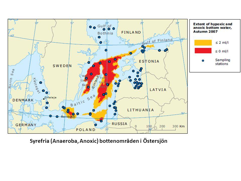 Syrefria (Anaeroba, Anoxic) bottenområden i Östersjön