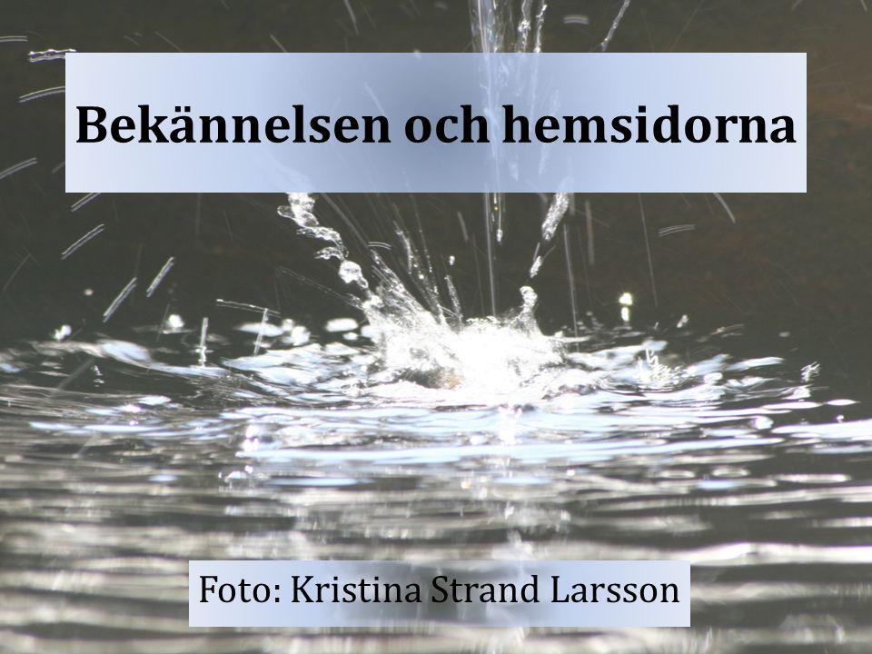 Bekännelsen och hemsidorna Foto: Kristina Strand Larsson