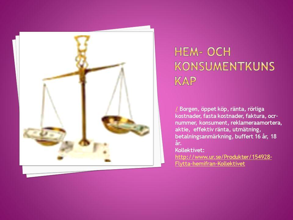 // Borgen, öppet köp, ränta, rörliga kostnader, fasta kostnader, faktura, ocr- nummer, konsument, reklameraamortera, aktie, effektiv ränta, utmätning,