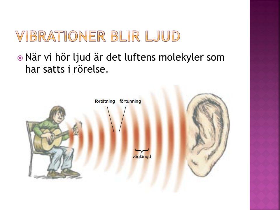  En gitarr är en ljudkälla  Strängen skapar vågor av tätare och tunnare luft som sprider sig åt alla håll i luften  Det uppstår en ljudvåg  Avståndet mellan två förtätningar eller två förtunningar kallas våglängd