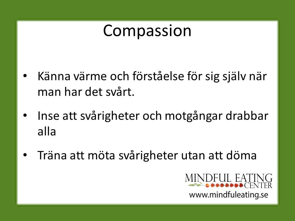 Compassion Känna värme och förståelse för sig själv när man har det svårt.