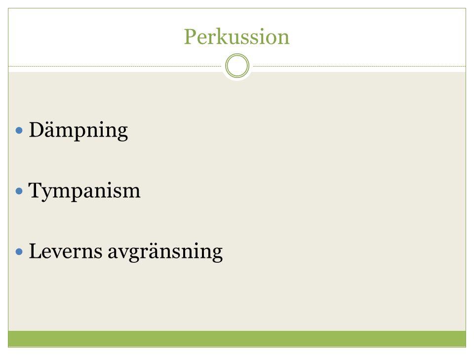 Perkussion Dämpning Tympanism Leverns avgränsning