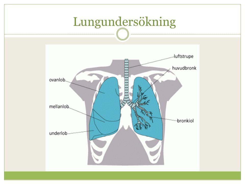 Lungundersökning