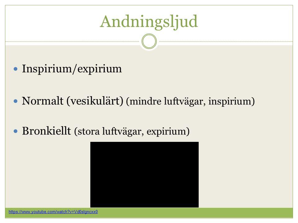 Andningsljud Inspirium/expirium Normalt (vesikulärt) (mindre luftvägar, inspirium) Bronkiellt (stora luftvägar, expirium) https://www.youtube.com/watch v=Vd0sIgncxx0