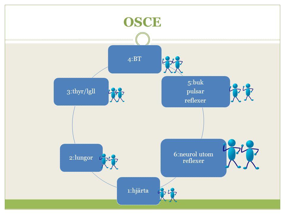 OSCE 4:BT 5:buk pulsar reflexer 6:neurol utom reflexer 1:hjärta2:lungor3:thyr/lgll