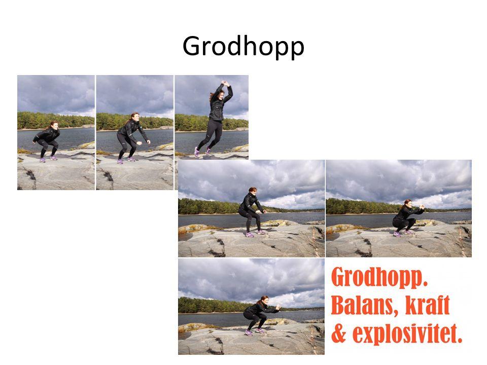 Grodhopp