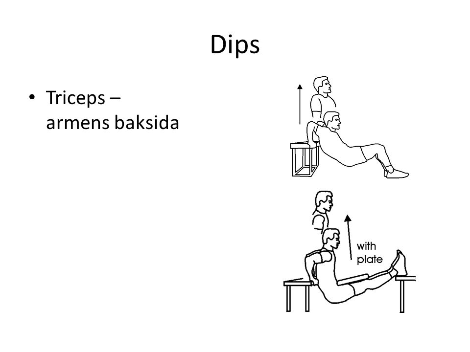 Dips Triceps – armens baksida