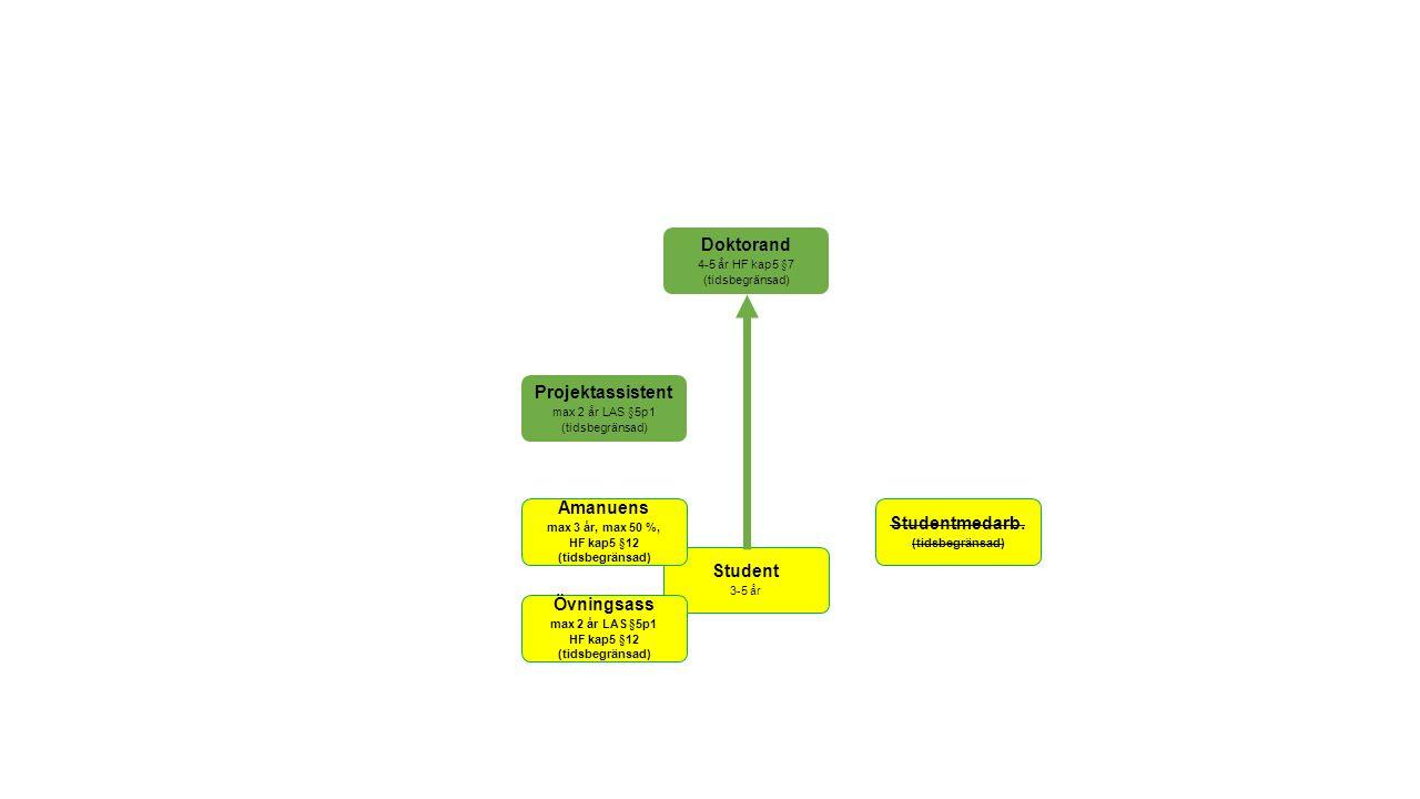 Anställningsformer Övningsassistent, timmar (LAS ALVA §5 p1, max 2 år inom en 5 årsperiod) Amanuens, förordnande (HF 5 kap § 12, max 3 år och max 50 %, registrerad i Ladok som student) Studentmedarbetare (???) Obs.