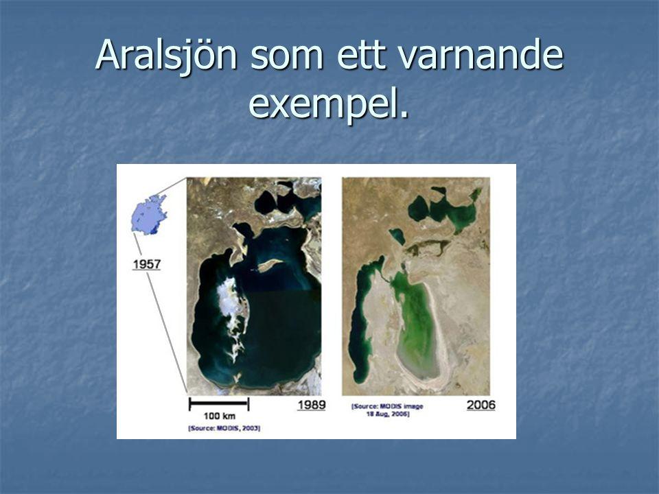 Aralsjön som ett varnande exempel.