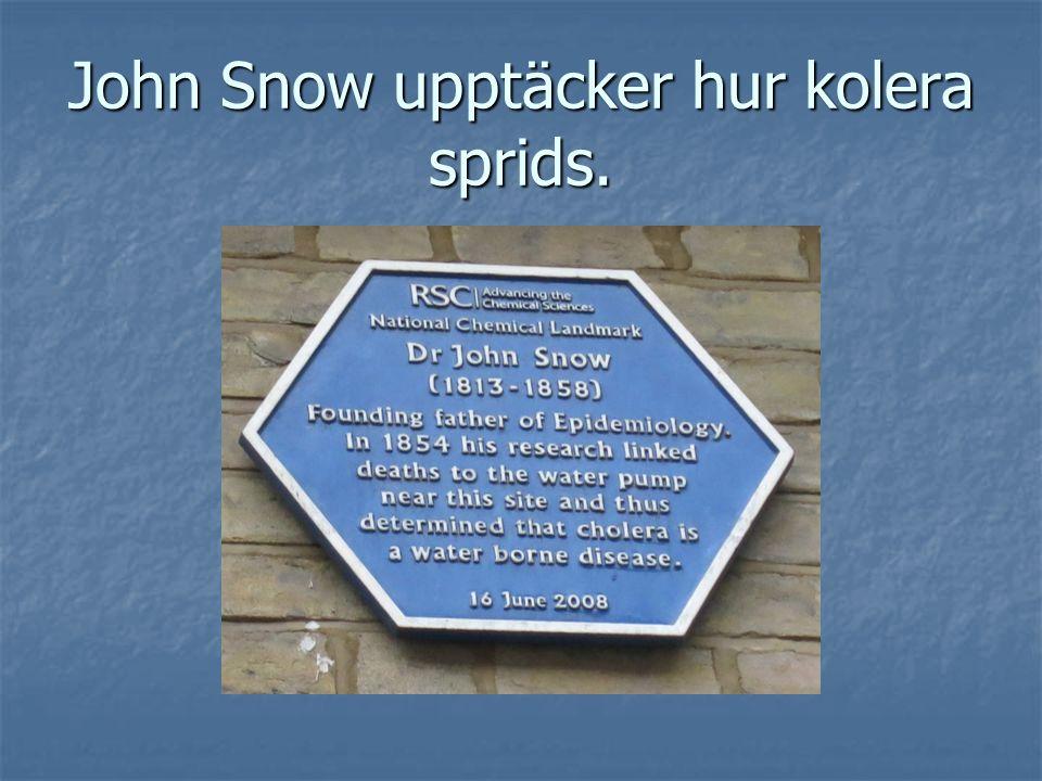 John Snow upptäcker hur kolera sprids.